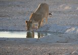 10 Namibia Adventures