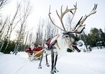 Private Tour to Reindeer farm in Rovaniemi