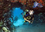 Discover Scuba Diving Course in Playa del Carmen with Two Coral Reef Dives