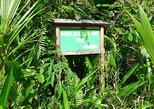 Le Niole - Mare Aux Cochons Trail