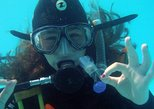Discover Scuba Diving experience in Albufeira