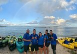 Bio Bay Night Kayaking - Round -Trip Transportation from San Juan area