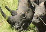 14 Days Uganda Wildlife Safari Holiday