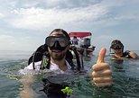 Scuba Diving in Rosario Islands with Photo - video Recording