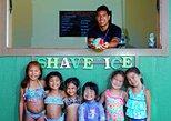 USA - Hawaii: Tour of North Shore and Hanauma Bay