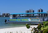 Encounters With Dolphins Tour