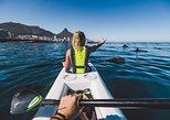 Atlantic Outlook Kayak Tours