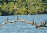 Kayak -Bird Watching Combo Tour from Puerto Quetzal