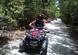 COMBO ADVENTURE 4 BY 4 (JEEP AND ATV) WHIT LUNCH AND GUACAMOLE EXPERIENCE
