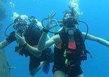 Australia & Pacific - Fiji: Scuba Dive In Fiji