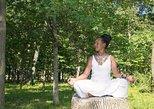 Amazing GWISHO HEALTH Crystal and Wellness RETREAT PACKAGE 7 day 6 nights