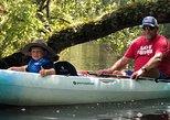 Amelia Island Eco Easy Guided Kayak Tour