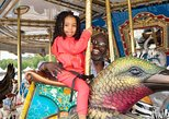 General Admission Carousel Ticket- Unlimited Rides