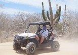 Mexico - Baja California Sur: Cabo Candelaria Village Adventure (Single UTV)