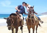 Mexico - Baja California Sur: Cabo white sand horseback tour & private sunset dinner