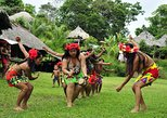 Cultural Exchange with the Embera Community - Day tour