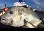 Fishing Trips. Popping, jigging, big game, live bait