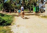 Acapulco Beach Horseback Riding - MEXICAN CHICKEN SNACKS & Baby Turtle Release
