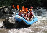 Ayung River Rafting Admission