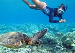Bali snorkeling at blue lagoon and tanjung jepun with local guide