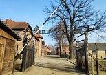 Auschwitz Birkenau & Salt Mine in one day from Krakow