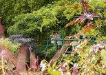 Keine Warteschlangen: Halbtägiger Ausflug: Giverny und Monets Haus ab Paris
