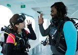 experience a boat dive activity