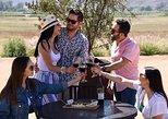Mexico - Baja California: Degustación de vinos y tour de nuestra vinícola