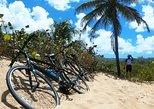 Island Bike Tour: on regular or electric bicycles.