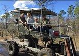 4-Hour Swamp Buggy Adventure Tour