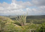 Caribbean - Aruba: Eco-friendly hike to the highest point of Aruba