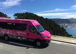 Wellington City Sights and Coast Tour