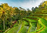 Private Tour in Ubud: All Best Nature, Culture and Heritage