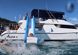 Phi Phi and Maiton Islands dolphin quest by power catamaran - late departure