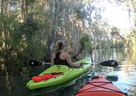 Crystal River Kayak Rental with Manatee Viewing for 4 hours