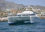 12 Person Whale Watching Catamaran Cruise with Snorkeling and Free Transfers