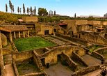 Herculaneum and Pompeii Tour from Sorrento