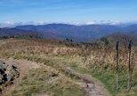 Art Loeb Trail Running Adventure