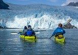 Aialik Glacier Wildlife Cruise and Kayaking