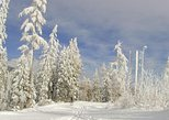 Winter in the High Tatras Mountains