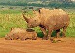 1-Day Karen Blixen Museum, Baby Elephant, Giraffe Center, Nairobi National Park