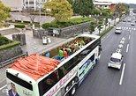 - Kagoshima, JAPON