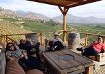 Exclusive Wineries near Santiago- EL PRINCIPAL and HARAS DE PIRQUE
