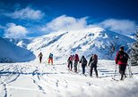 4 hours skitour trip in Tatra Mountains for beginners with renting equipment
