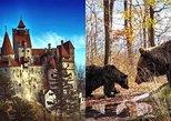 Bran (Dracula) Castle, Bear Sanctuary, Rasnov Fortress and Palinca Distillery