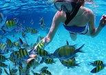 Caribbean - Bahamas: Snorkeling