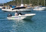 Full Day Bareboat Rental in St John USVI on our 16' Boston Whaler: Thing 4