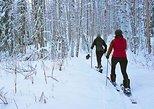 Daylight Ski Tour