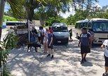 Caribbean - Cayman Islands: Scenic Island Tour