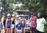Caribbean - St Kitts and Nevis: Off Road Rain Forest 4X4